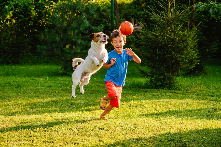 Pet dogs may improve social-emotional skills in young kids