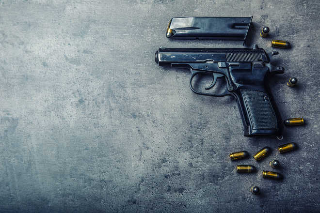 Inebriated Himachal man shoots dead wife in a fit of rage