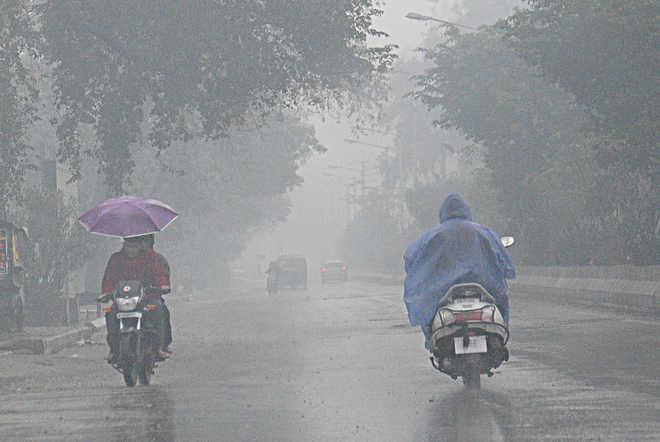Rain, high-velocity winds lash Delhi; more expected