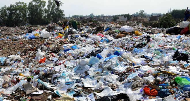 Chandigarh Municipal Corporation  to dump 25K tonnes of waste at Dadu Majra ground