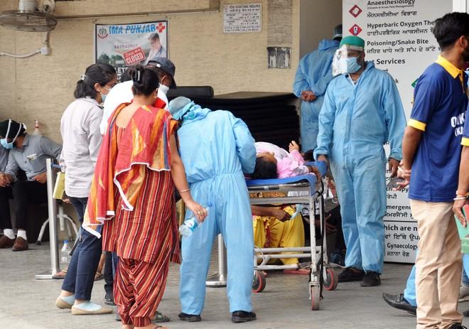 No respite: 18 more Covid-19 cases take Amritsar tally to 1,033