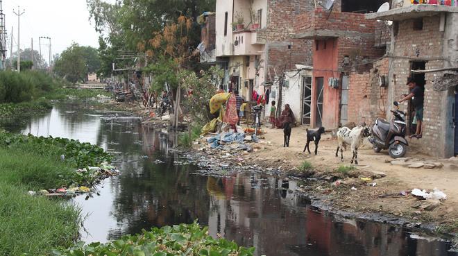 Ganda nullah in need of immediate cleansing