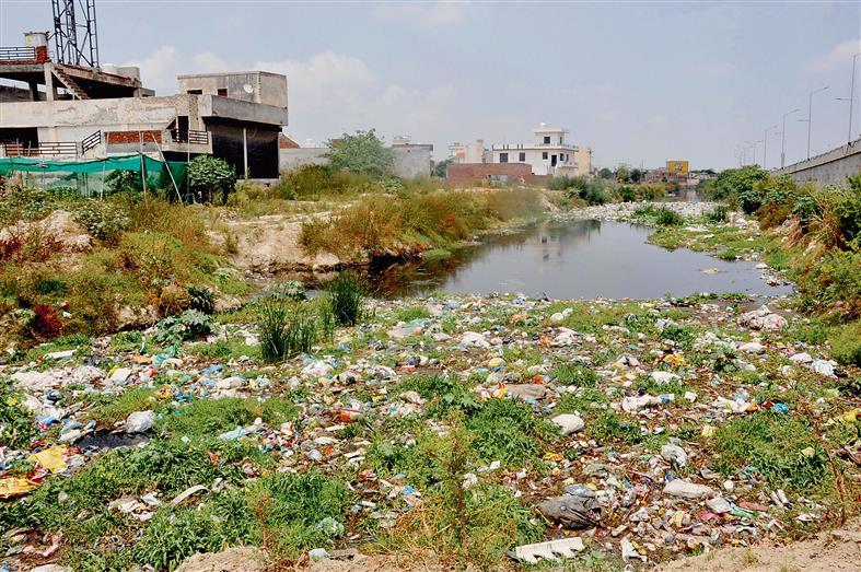 Tung Dhab drain raises stink in Amritsar, poses health hazard to residents