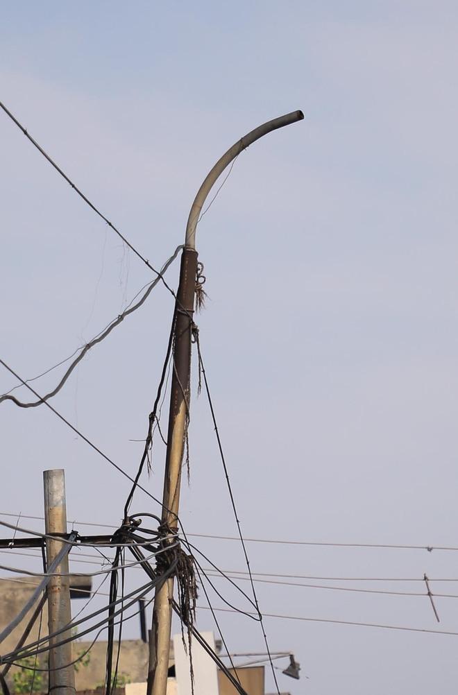 Lamp-less alleys, stray dog menace keep Nijatam Nagar residents on tenterhooks