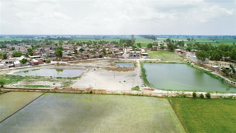 Filthy pond turns into lake: Two young men change the face of their village