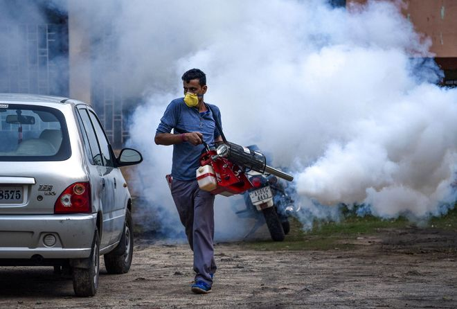 Start fogging to ward off dengue: Councillors