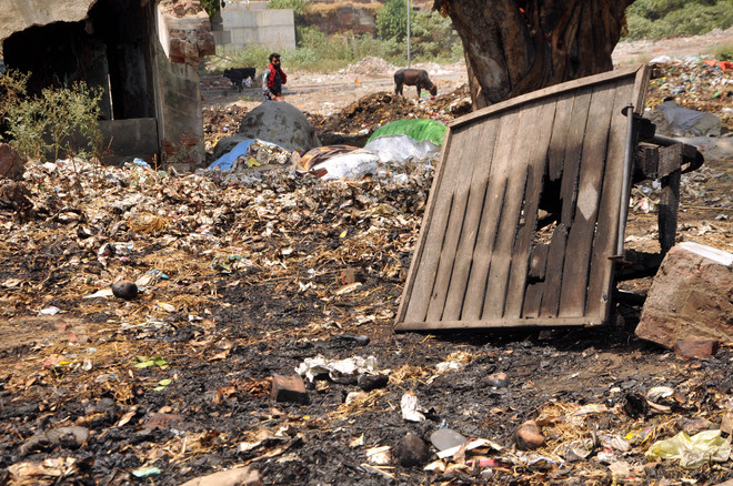 Dumped, unattended combustible refuse led to fire in old sabzi mandi