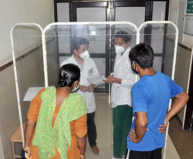 Virus snuffs out 25-yr-old's life, 14 fresh cases in Amritsar