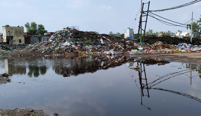 Garbage mounds turning bigger sans waste management plant