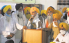 Dhindsa proclaims himself as SAD chief