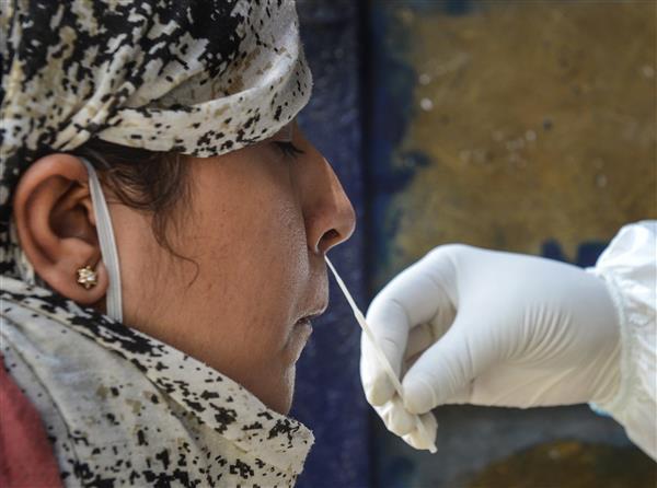 Mohali reports 84 new coronavirus cases, two fatalities