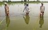 100 Rohtak villages waterlogged