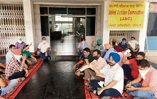 Profs strike a balance between teaching & agitation in Patiala