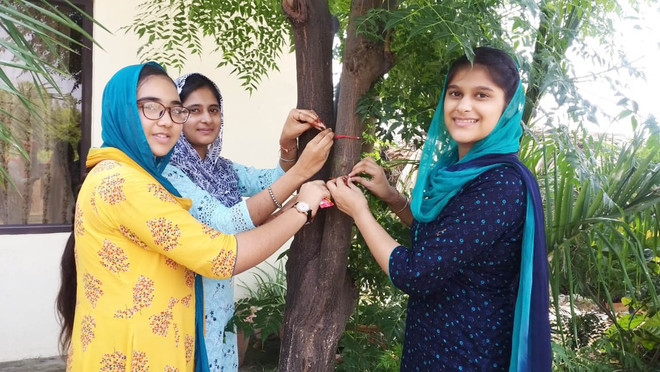 Go green: Families tie rakhis to trees, pledge to preserve them
