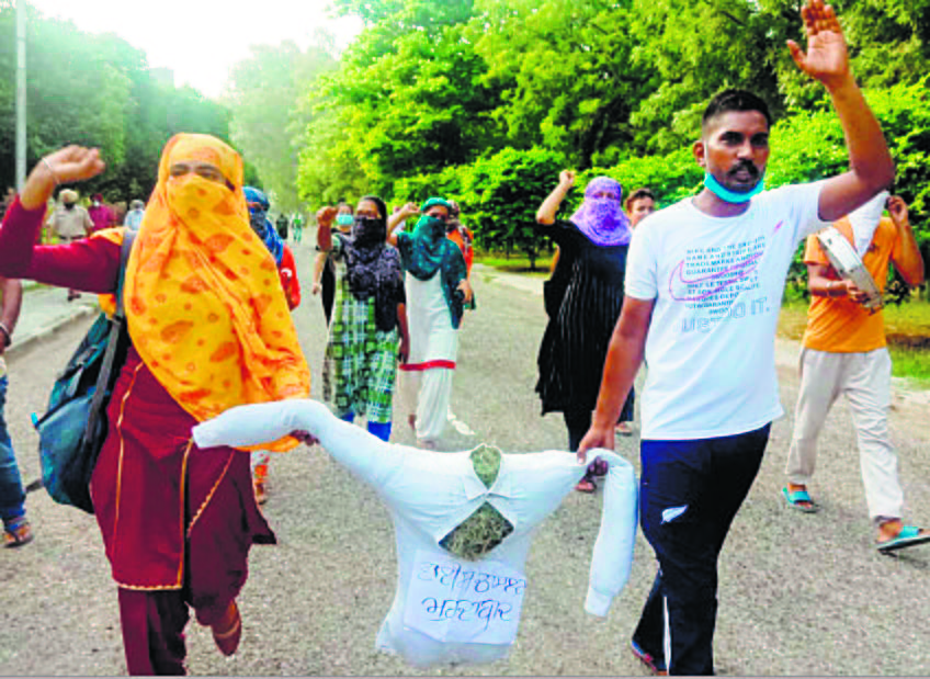 Punjabi varsity students try to enter VC's residence, stopped