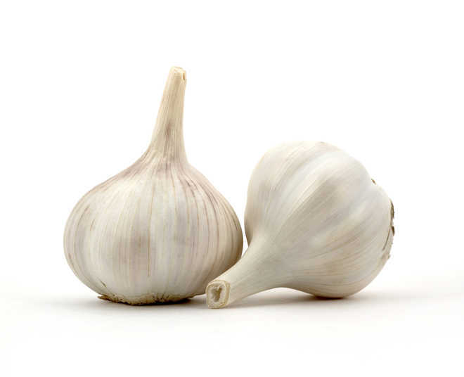 Sirmaur's garlic identified under '1 District, 1 Product'