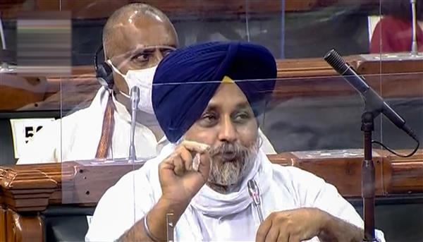 Not consulted before 3 agri-ordinances: BJP ally Akali Dal; govt says states were in the loop