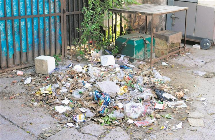 Patiala residents to segregate waste or pay fine