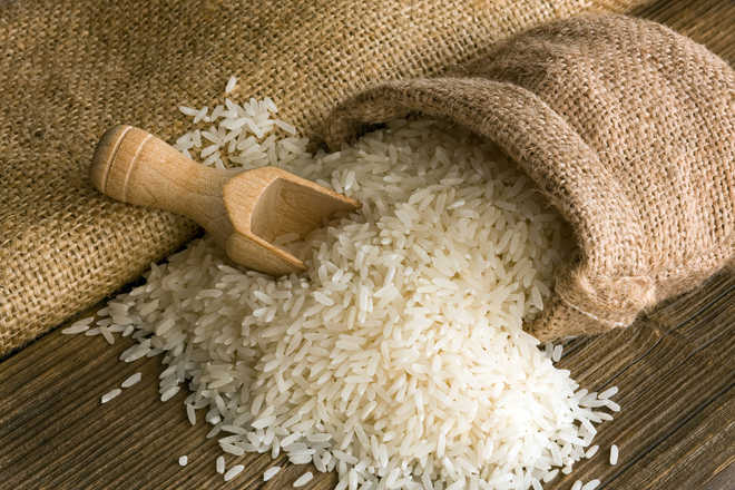 Pakistan risks Basmati export as India applies GI tag in EU