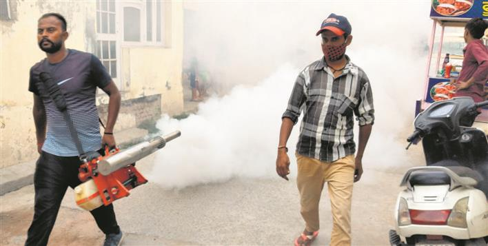 Municipal Corporation seeks public cooperation to tackle dengue in Patiala