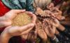 Reduce food loss or risk drop in food security: UN agencies