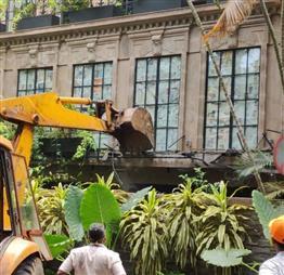 Bombay High Court tells BMC to stop demolition work atKangana's bungalow