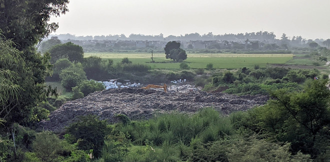 Industrial waste dump shifted to green belt in Amritsar