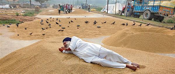 Will back farmers, say 5 Haryana BJP leaders after 'secret' meeting