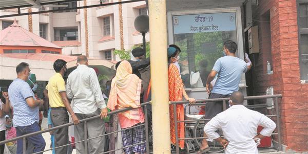 7 succumb to virus, 305 new cases in Amritsar