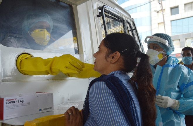 Covid-19: Six fatalities, 172 fresh infections in Ludhiana