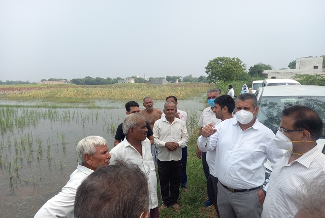 Crop on 1,500 acres still flooded in Palwal