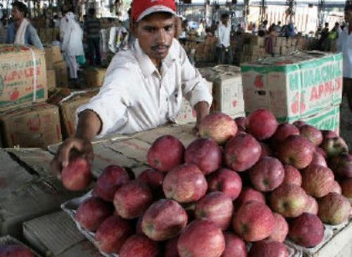 Apple prices fall, growers in Shimla allege manipulation