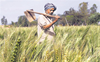 Support grows for Punjab farmers, non-agriculture bodies join in