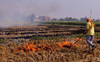 NASA draws attention to fires in fields