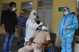 7 succumb to virus, death toll 695 in Ludhiana