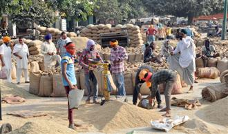 Paddy procurement begins, but harvesting yet to pick up the pace