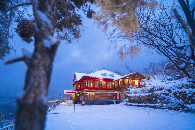 Why Himachal homestays mean business